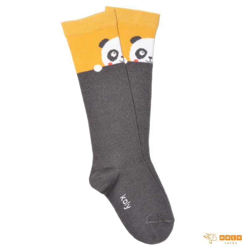 Panda Dokolenice
