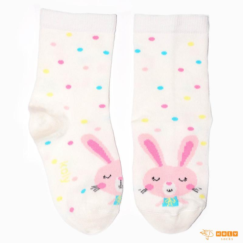 Cirkuski zeka čarape